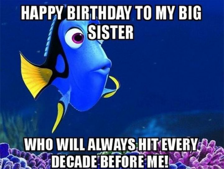 "91 Sister Birthday Memes - ""Happy birthday to my big sister, who will always hit every decade before me!"""