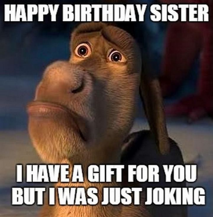 "91 Sister Birthday Memes - ""Happy birthday sister. I have a gift for you but I was just joking."""