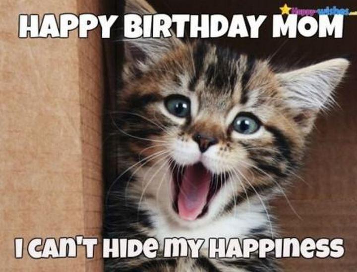 "101 Happy Birthday Mom Memes - ""Happy birthday mom. I can't hide my happiness."""