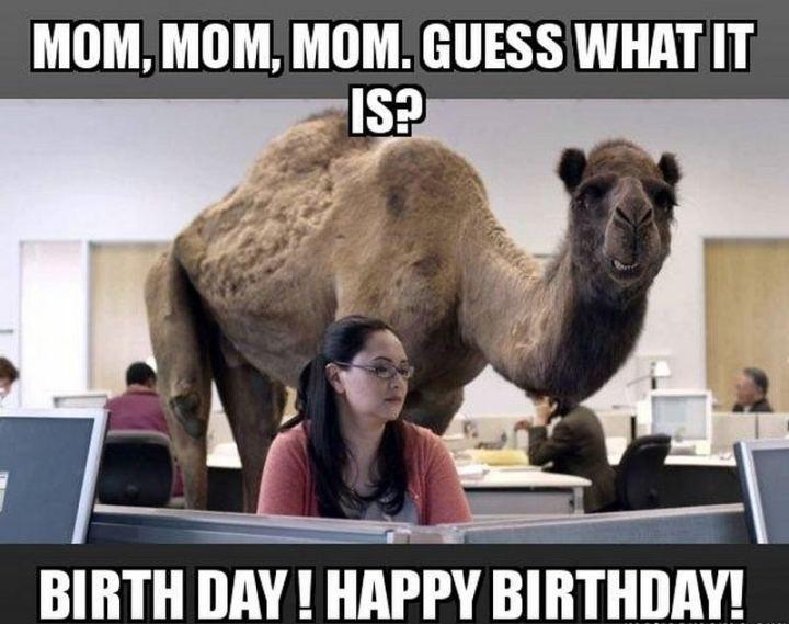 "101 Happy Birthday Mom Memes - ""Mom, mom, mom. Guess what it is? Birthday day! Happy birthday!"""