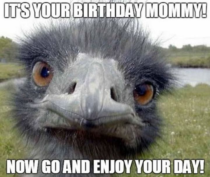 """101 Happy Birthday Mom Memes - """"It's your birthday mommy! Now go and enjoy your day!"""""""