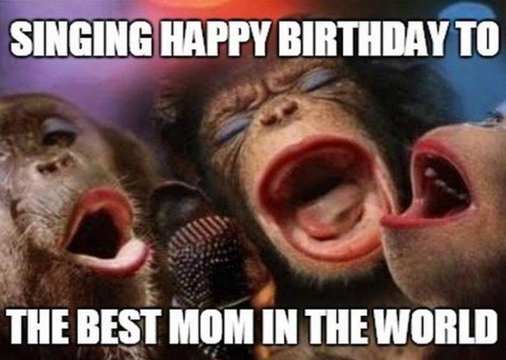 "101 Happy Birthday Mom Memes - ""Singing happy birthday to the best mom in the world."""