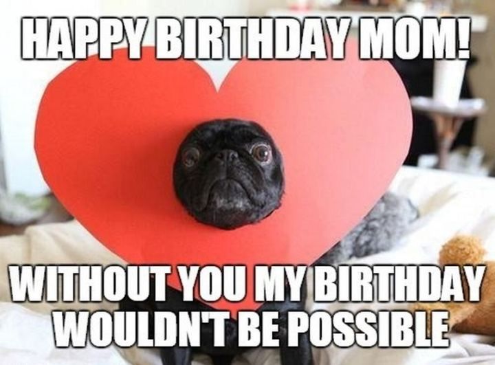 """101 Happy Birthday Mom Memes - """"Happy birthday mom! Without you my birthday wouldn't be possible."""""""