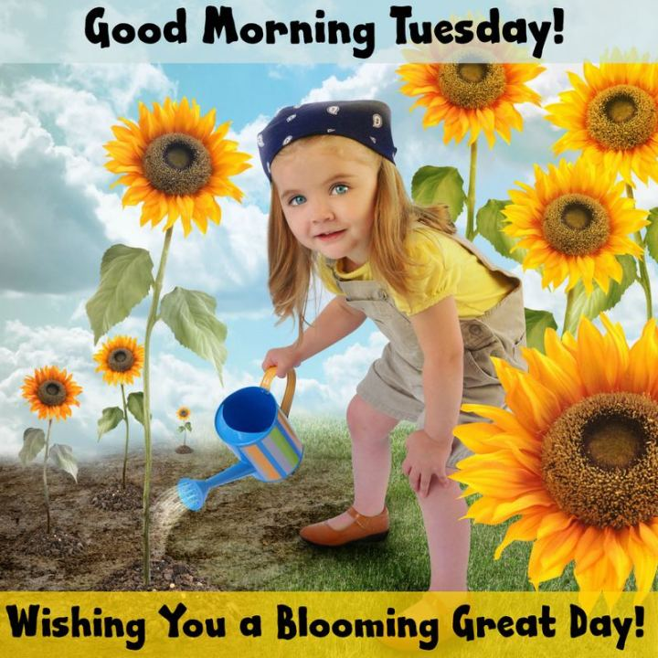 "55 Tuesday Quotes - ""Good Morning Tuesday! Wishing you a blooming great day!"" - Unknown"
