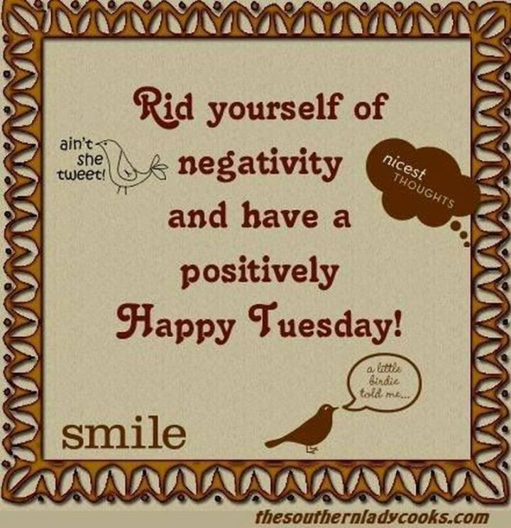 "55 Tuesday Quotes - ""Rid yourself of negativity and have a positively Happy Tuesday."" - Unknown"