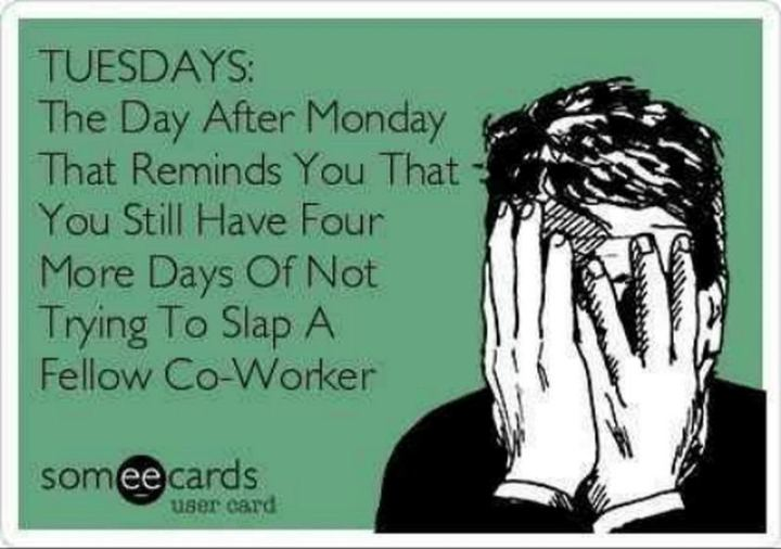 "55 Tuesday Quotes - ""Tuesday: The day after Monday that reminds you that you still have four more days of not trying to slap a fellow co-worker."" - Unknown"