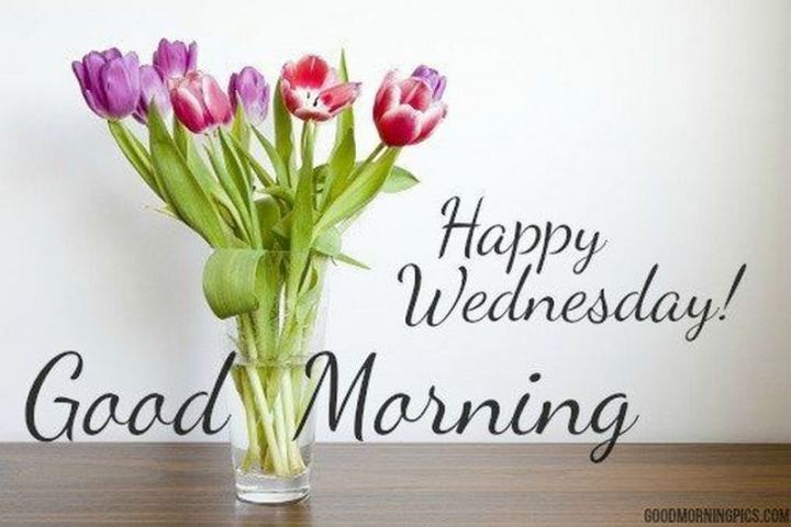 "65 Happy Wednesday Quotes - ""Happy Wednesday! Good Morning."" - Unknown"
