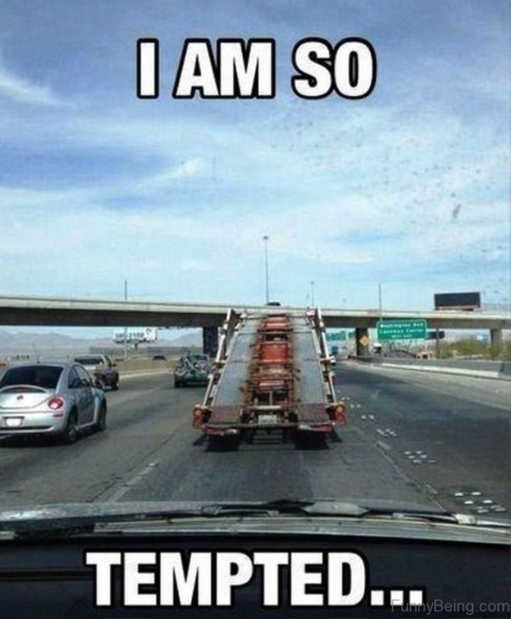 """85 Car Memes - """"I am so tempted..."""""""