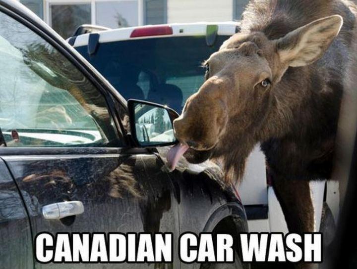 "85 Car Memes - ""Canadian car wash."""
