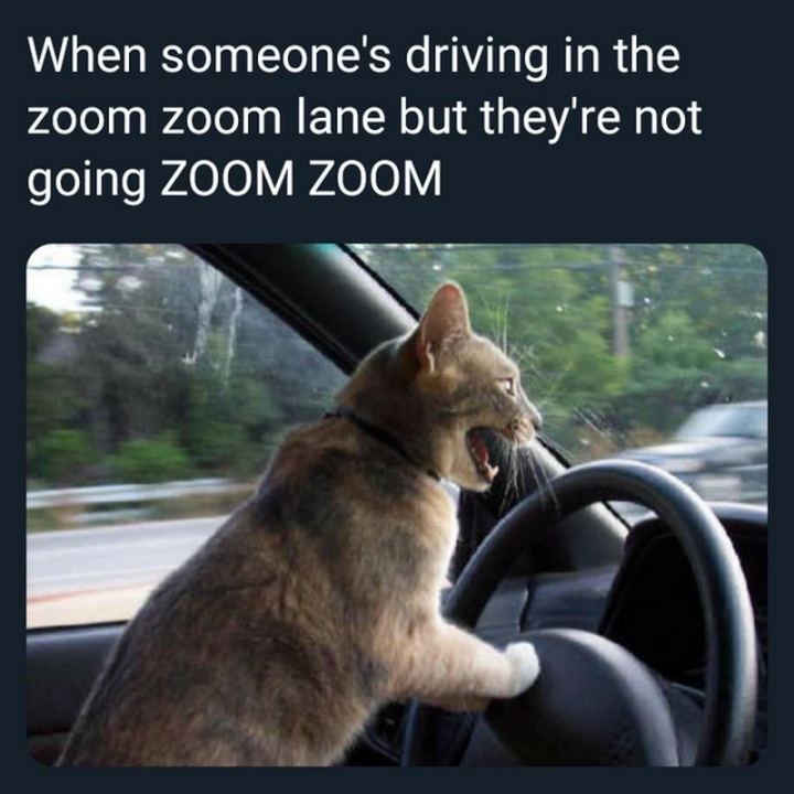 "85 Car Memes - ""When someone's driving in the zoom zoom lane but they're not going ZOOM ZOOM."""