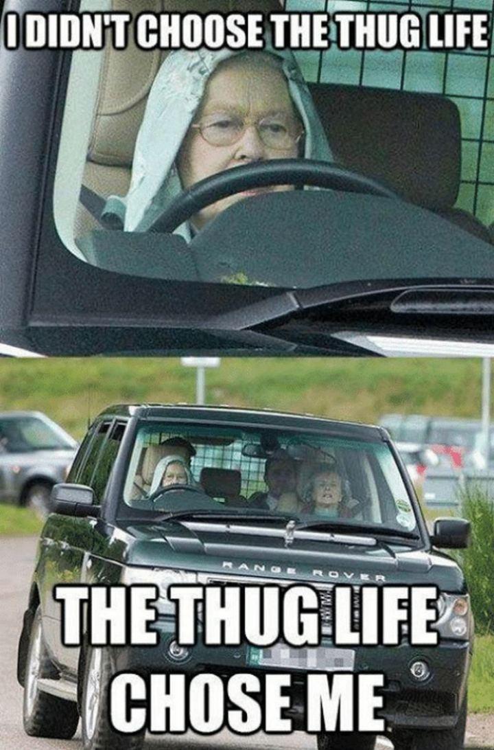 "81 Funny Life Memes - ""I didn't choose the thug life. The thug life chose me."""