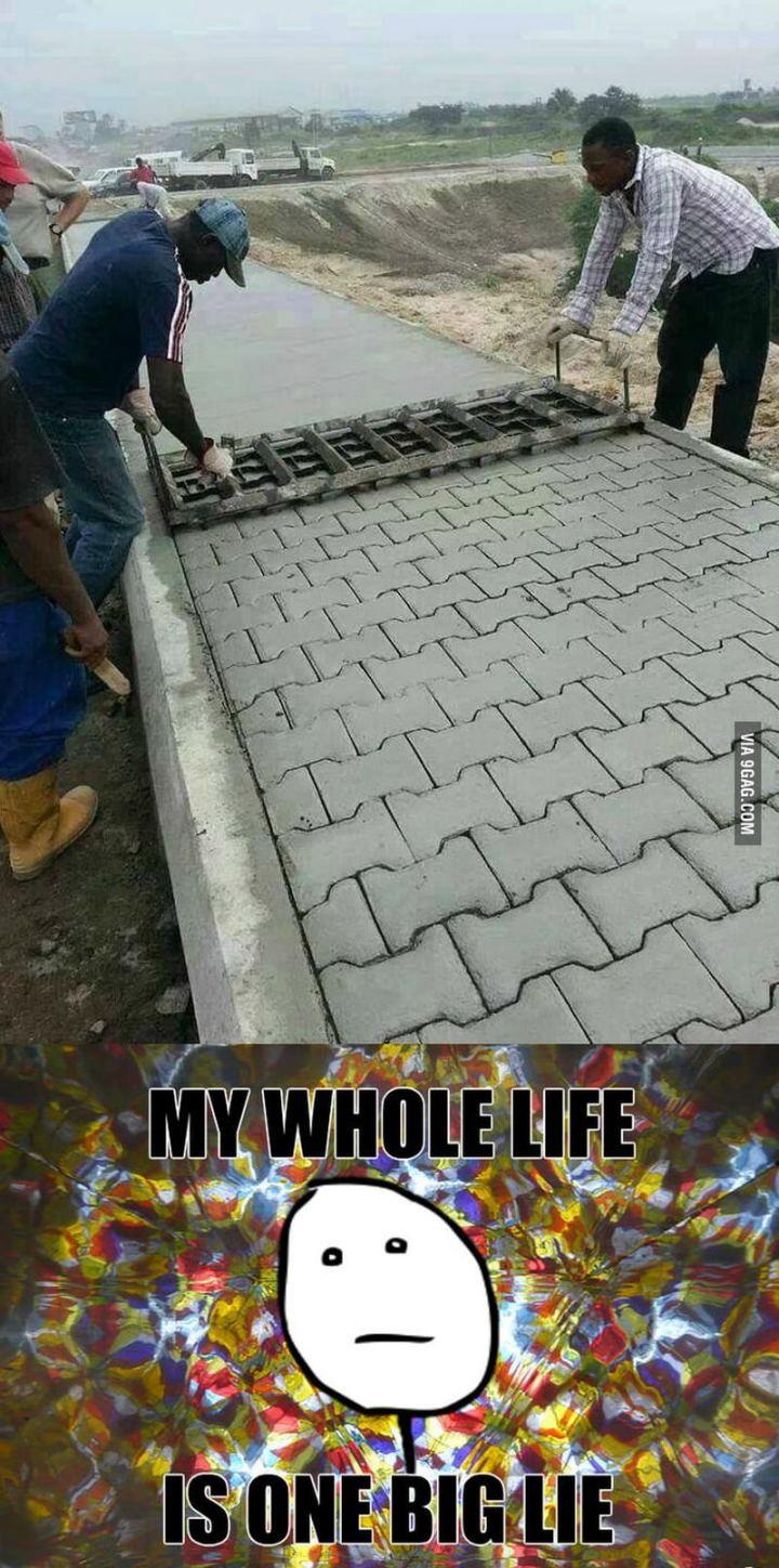 """81 Funny Life Memes - """"My whole life is one big lie."""""""