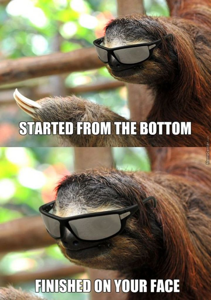 """71 Funny Dirty Memes - """"Started from the bottom. Finished on your face."""""""