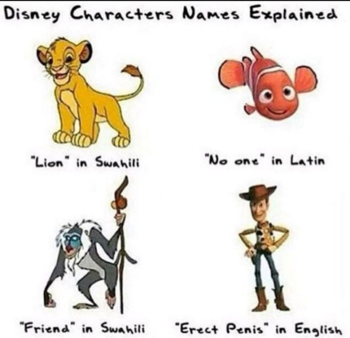 "51 Funny Disney Memes - ""Disney characters' names explained: 'Lion' in Swahili. 'No one' in Latin. 'Friend' in Swahili. 'Erect penis' in English."""