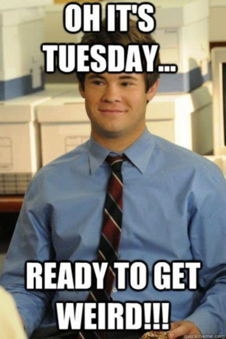Hilarious Tuesday Memes : hilarious, tuesday, memes, Funny, Tuesday, Memes, You're, Happy, Survived, Workday