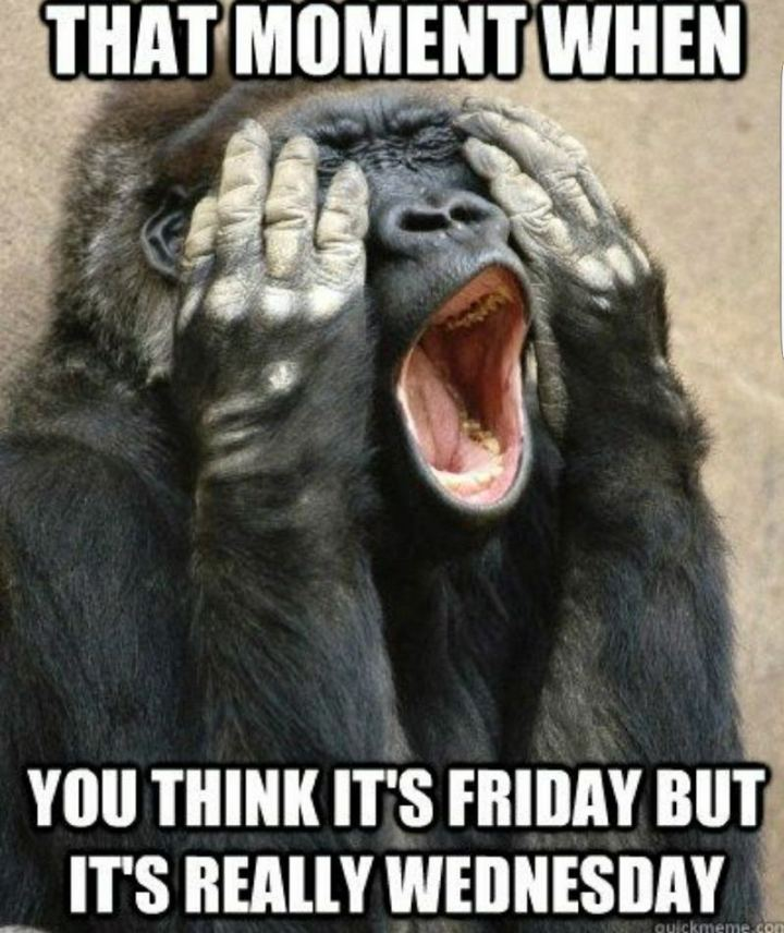 """47 Funny Work Memes - """"That moment when you think it's Friday but it's really Wednesday."""""""