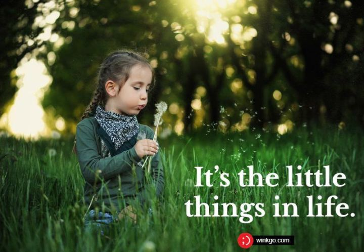 "53 Happy Quotes - ""It's the little things in life."""