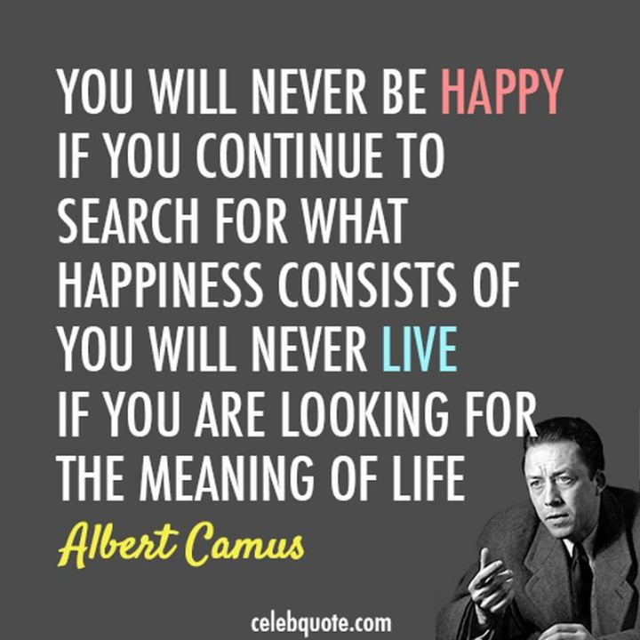 "53 Happy Quotes - ""You will never be happy if you continue to search for what happiness consists of. You will never live if you are looking for the meaning of life."" - Albert Camus"