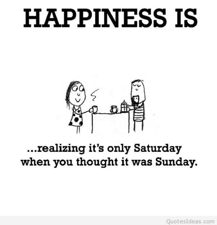 "101 Saturday Memes - ""Happiness is...realizing it's only Saturday when you thought it was Sunday."""