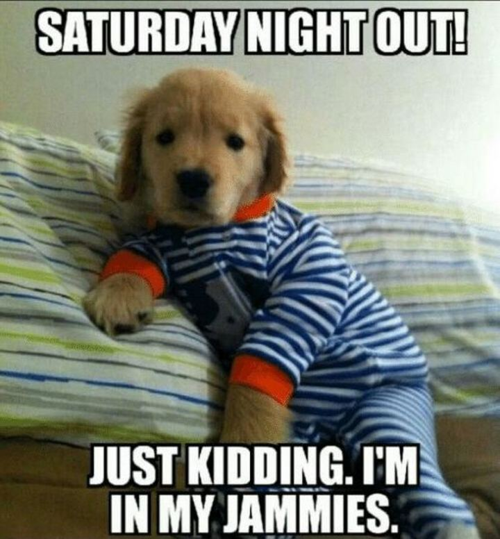 "101 Saturday Memes - ""Saturday night out! Just kidding. I'm in my jammies."""