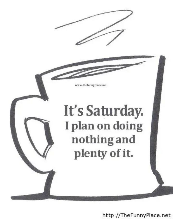 "101 Saturday Memes - ""It's Saturday. I plan on doing nothing and plenty of it."""