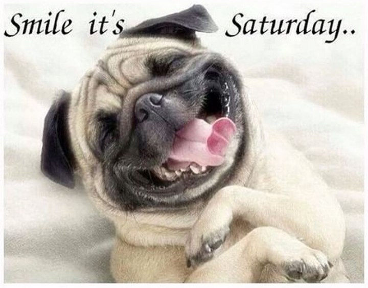 "101 Saturday Memes - ""Smile it's Saturday..."""