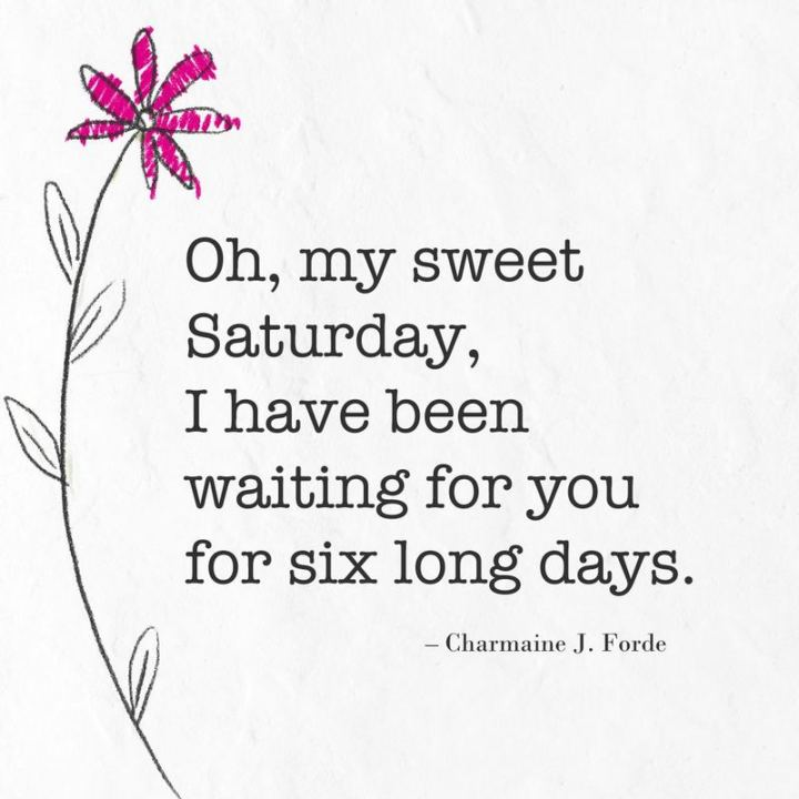 """59 Saturday Quotes - """"Oh, my sweet Saturday, I have been waiting for you for six long days."""" - Charmaine J. Forde"""