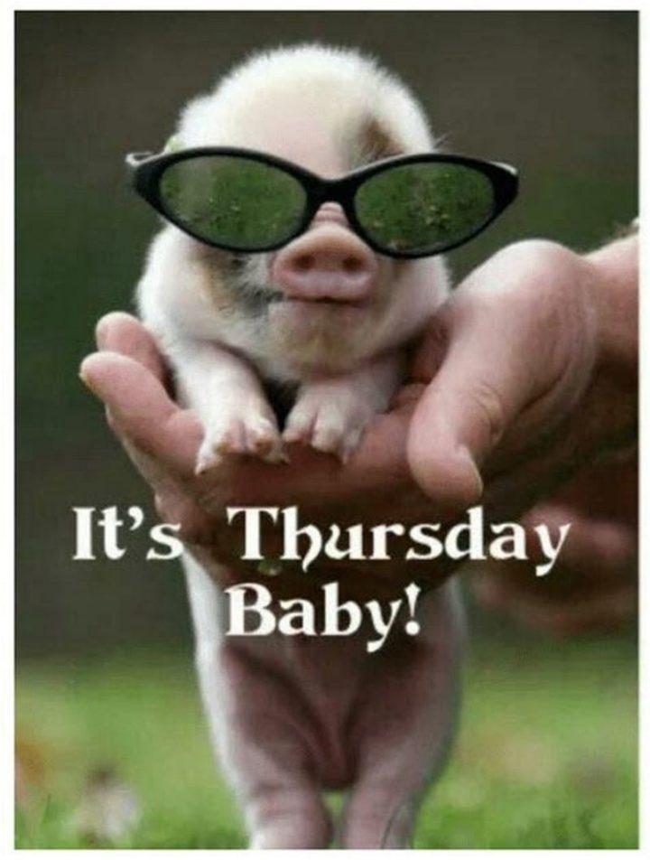 Thursday Meme : thursday, Funny, Thursday, Memes, Night, Happy