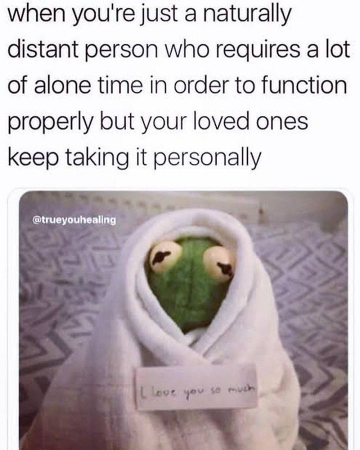 "75 Introvert Memes - ""When you're just a naturally distant person who requires a lot of alone time in order to function properly but your loved ones keep taking it personally: I love you so much."""