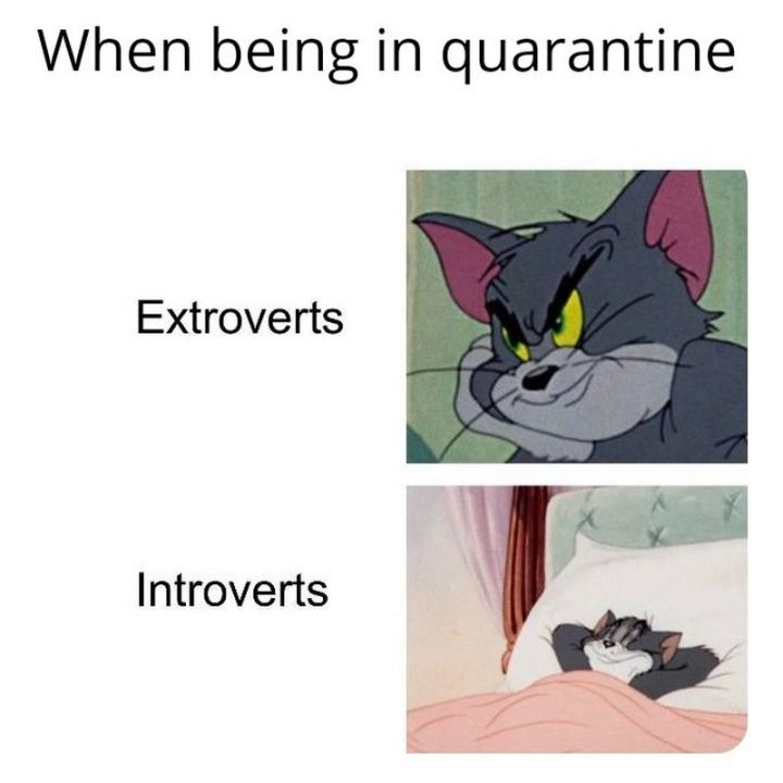 "75 Introvert Memes - ""When being in quarantine: Extroverts vs Introverts."""