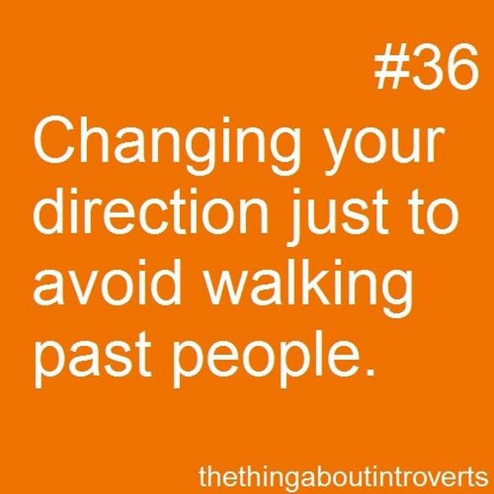 "75 Introvert Memes - ""Changing your direction just to avoid walking past people."""