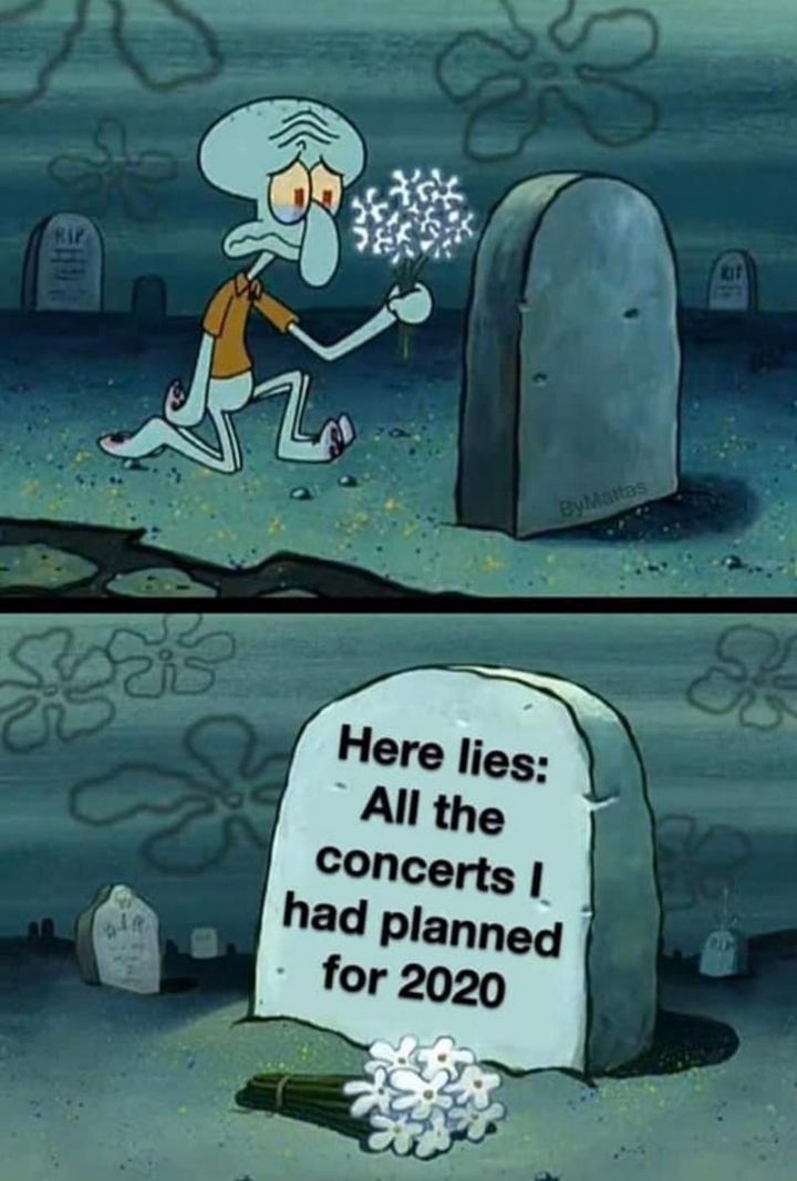 "53 Sad Memes - ""Here lies: All the concerts I had planned for 2020."""