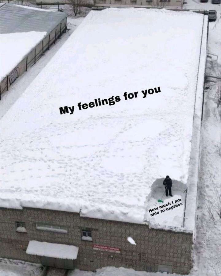 "53 Sad Memes - ""My feelings for you. How much I am able to express."""