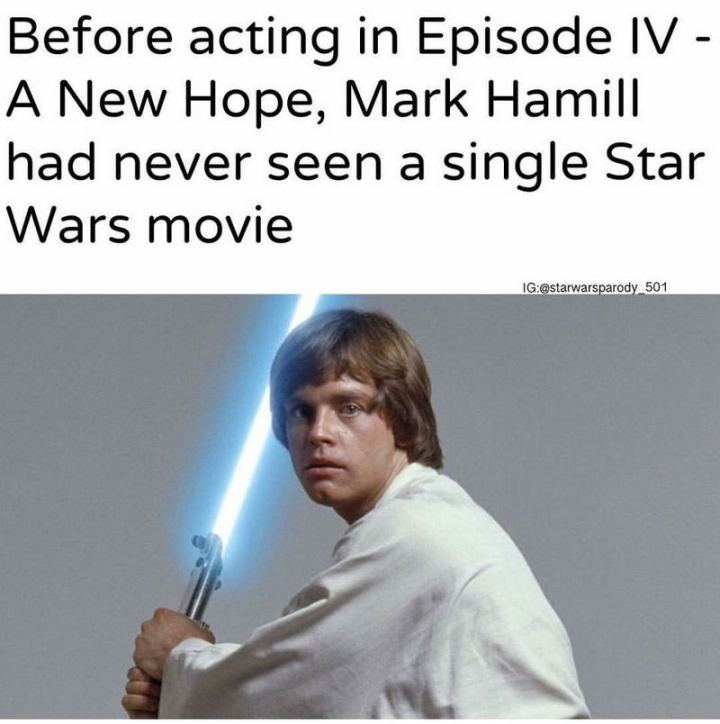 """61 Star Wars Memes - """"Before acting in Episode IV - A New Hope, Mark Hamill had never seen a single Star Wars movie."""""""
