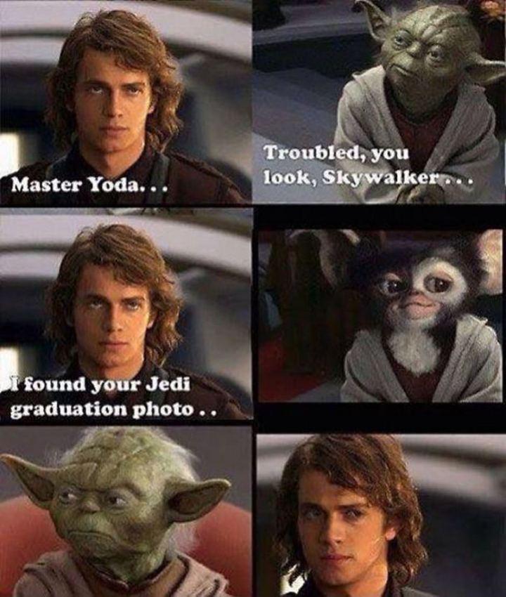 "61 Star Wars Memes - ""Master Yoda...Troubled, you look, Skywalker...I found your Jedi graduation photo..."""