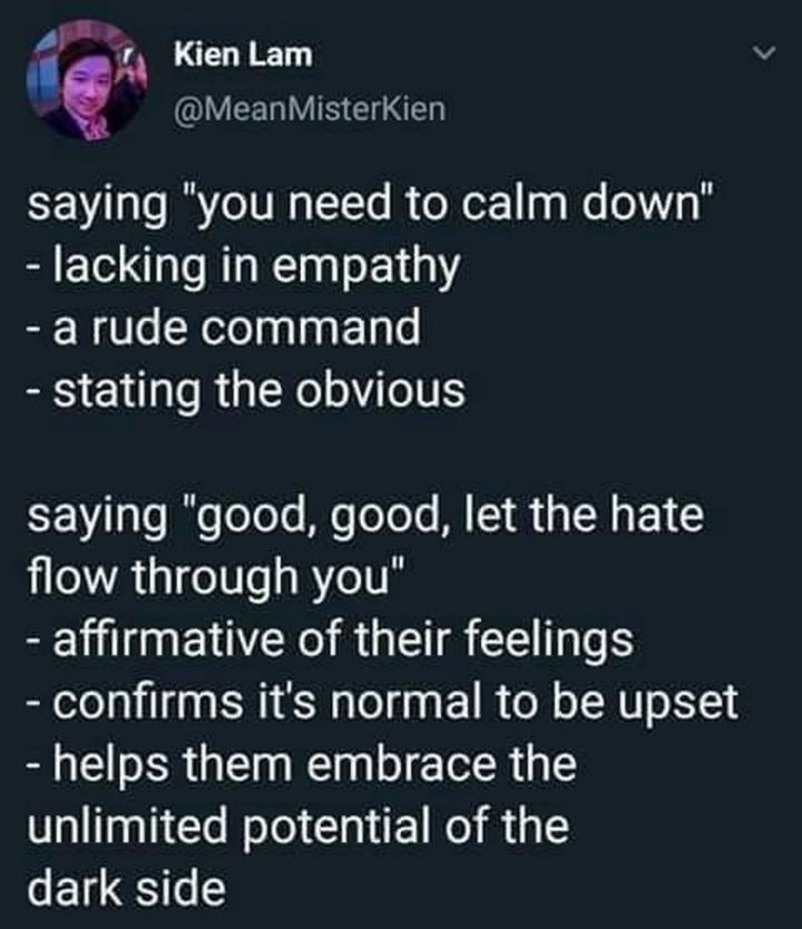 """61 Star Wars Memes - """"Saying 'You need to calm down': Lacking in empathy. A rude command. Stating the obvious. Saying 'Good, good, let the hate flow through you': Affirmative of their feelings. Confirms it's normal to be upset. It helps them embrace the unlimited potential of the dark side."""""""