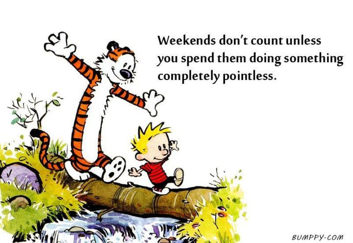 "47 Sunday Quotes - ""Weekends don't count unless you spend them doing something completely pointless."" - Bill Watterson"