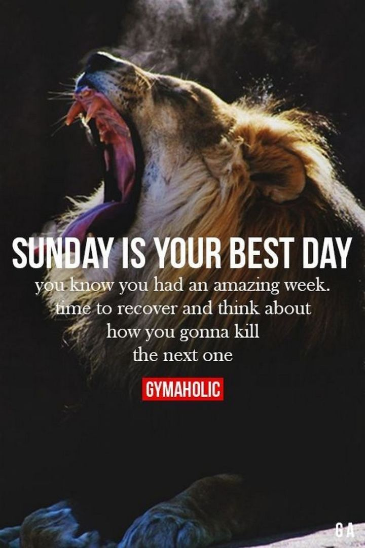 "47 Sunday Quotes - ""Sunday is the best day. You know you had an amazing week. Time to recover and think how you gonna kill the next one."" - Unknown"