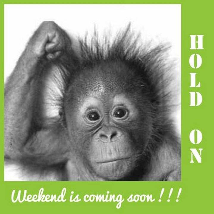 "55 ""Almost Friday"" Memes - ""Hold on, weekend is coming soon!!!"""