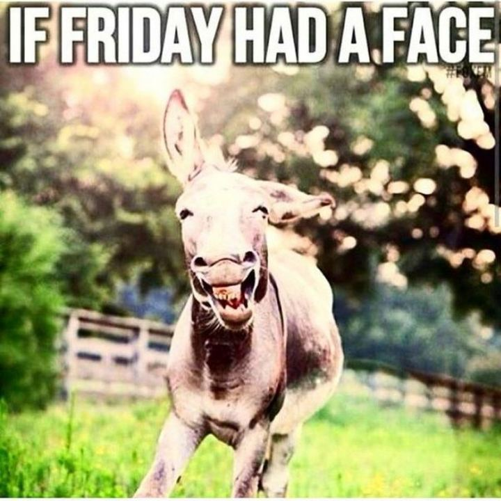 "55 ""Almost Friday"" Memes - ""If Friday had a face."""