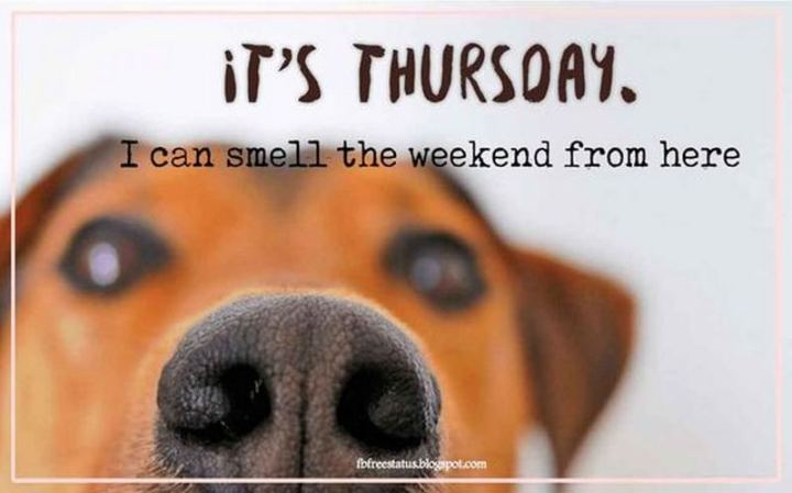 "55 ""Almost Friday"" Memes - ""It's Thursday. I can smell the weekend from here."""
