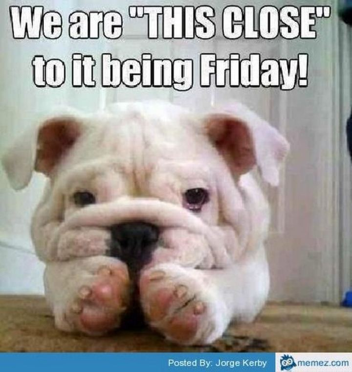 "55 ""Almost Friday"" Memes - ""We are 'THIS CLOSE' to it being Friday!"""
