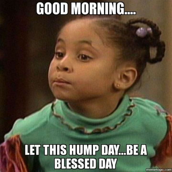 "101 ""Have a Great Day"" Memes - ""Good morning...Let this hump day...Be a blessed day."""