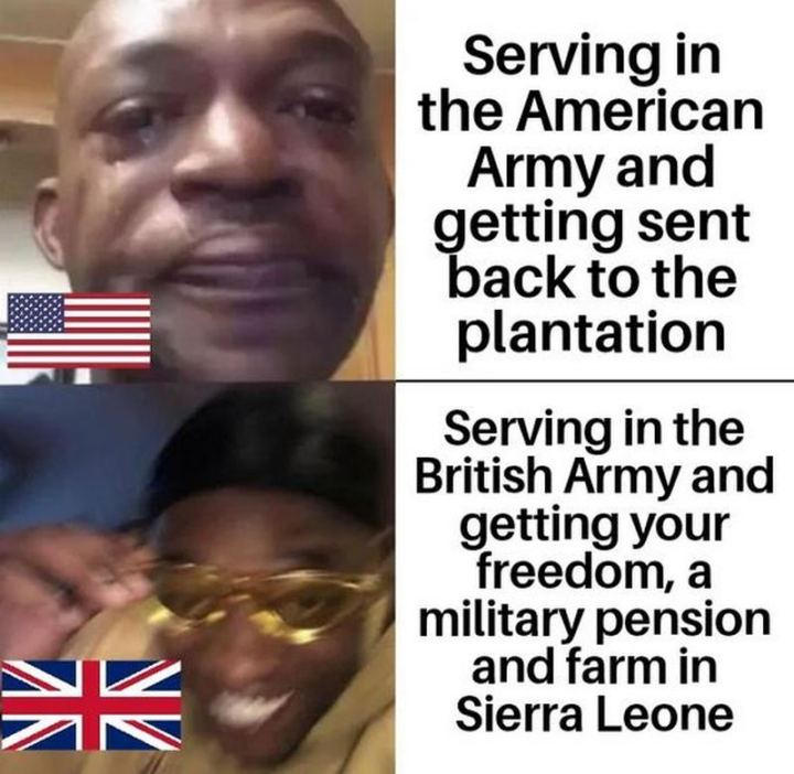 "55 Funny History Memes - ""Serving in the American Army and getting sent back to the plantation. Serving in the British Army and getting your freedom, a military pension, and farm in Sierra Leone."""