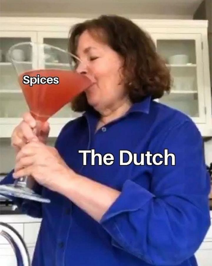 "55 Funny History Memes - ""Spices. The Dutch."""