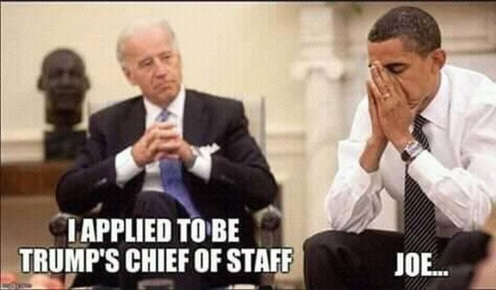 "51 Joe Biden Memes - ""I applied to be Trump's Chief of Staff. Joe..."""