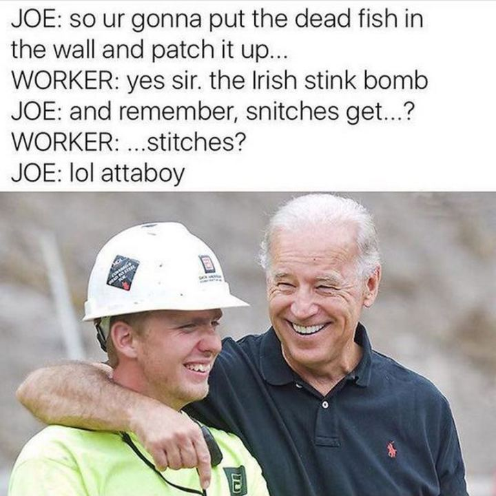 "51 Joe Biden Memes - ""Joe: So ur gonna put the dead fish in the wall and patch it up... Worker: Yes, sir. The Irish stink bomb. Joe: And remember, snitches, get...? Worker: ...Stitches? Joe: LOL attaboy."""