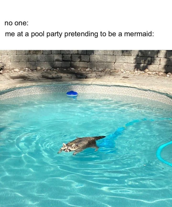 """No one: Me: At a pool party pretending to be a mermaid."""