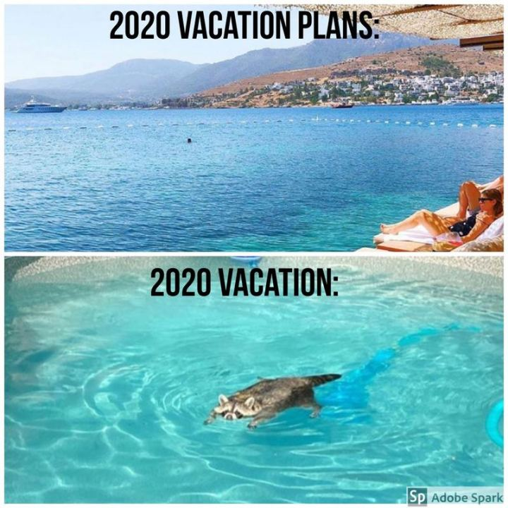"""2020 Vacation plans: 2020 Vacation:"""