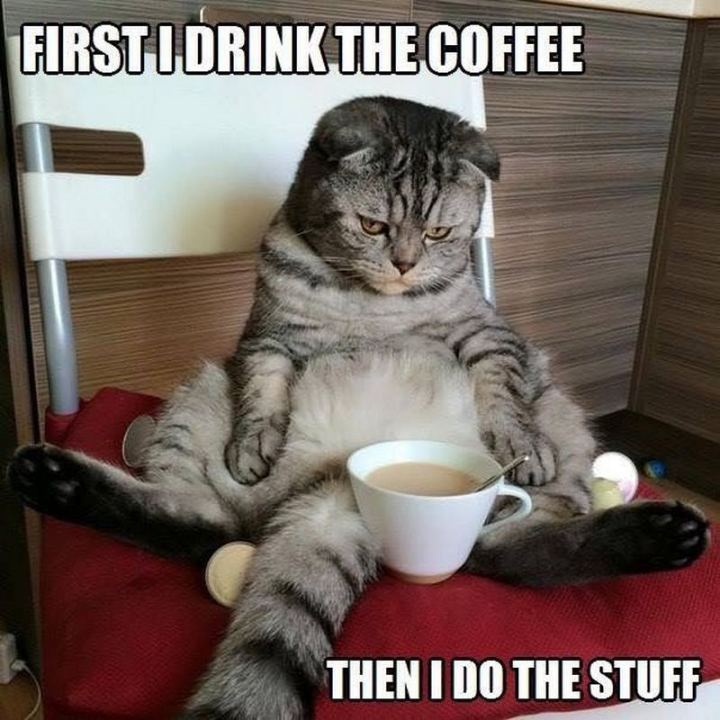 """First I drink the coffee, then I do the stuff."""